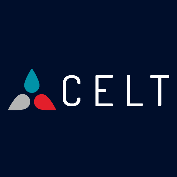 CELT COSS Exchange liquidity token satyarth